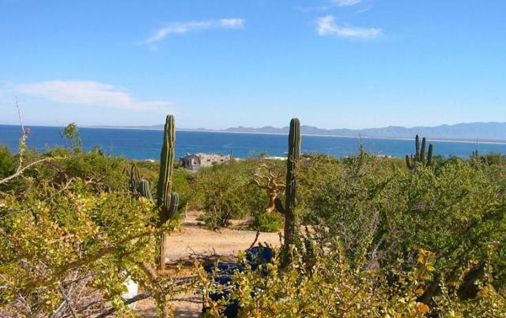 Foto de terreno habitacional en venta en  , la ventana, la paz, baja california sur, 1624482 No. 01