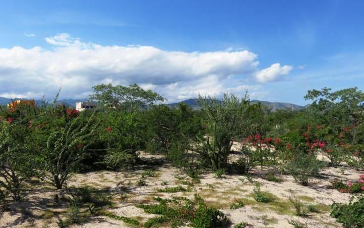 Foto de terreno habitacional en venta en  , la ventana, la paz, baja california sur, 2641553 No. 06