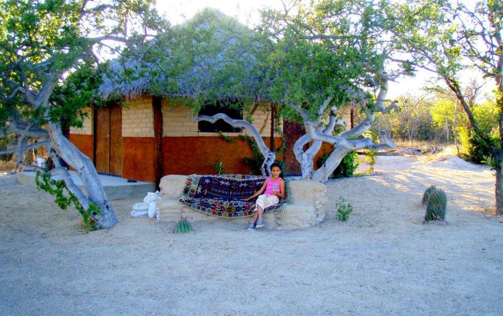 Foto de casa en venta en  , la ventana, la paz, baja california sur, 945309 No. 08