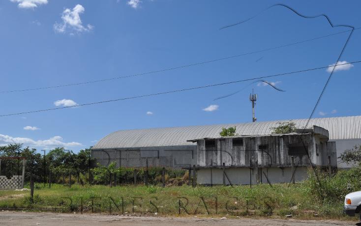 Foto de terreno comercial en renta en  , la victoria, tuxpan, veracruz de ignacio de la llave, 1117691 No. 07