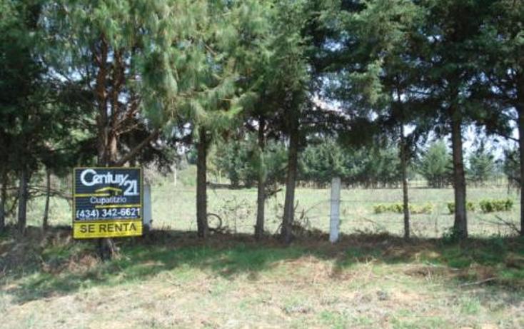 Foto de terreno comercial en renta en  , la vitela, pátzcuaro, michoacán de ocampo, 1202971 No. 01
