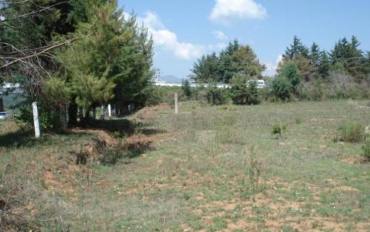 Foto de terreno comercial en renta en  , la vitela, pátzcuaro, michoacán de ocampo, 1202971 No. 04