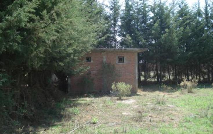 Foto de terreno comercial en renta en  , la vitela, pátzcuaro, michoacán de ocampo, 1202971 No. 05