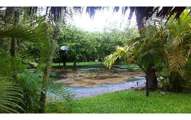 Foto de terreno habitacional en venta en  , la zanja o la poza, acapulco de ju?rez, guerrero, 1051351 No. 01