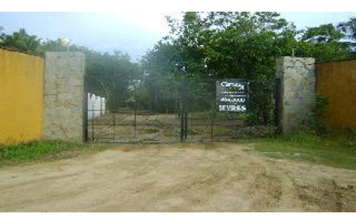 Foto de terreno habitacional en venta en  , la zanja o la poza, acapulco de ju?rez, guerrero, 1051351 No. 03