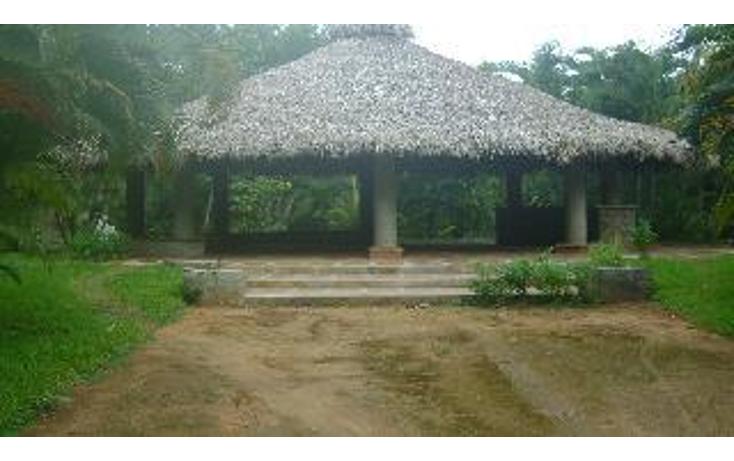 Foto de terreno habitacional en venta en  , la zanja o la poza, acapulco de ju?rez, guerrero, 1051351 No. 04