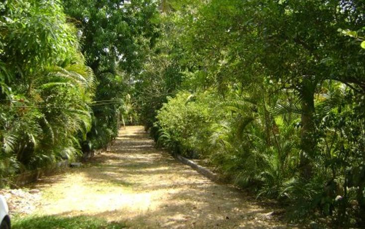 Foto de terreno comercial en venta en  , la zanja o la poza, acapulco de juárez, guerrero, 1074775 No. 05