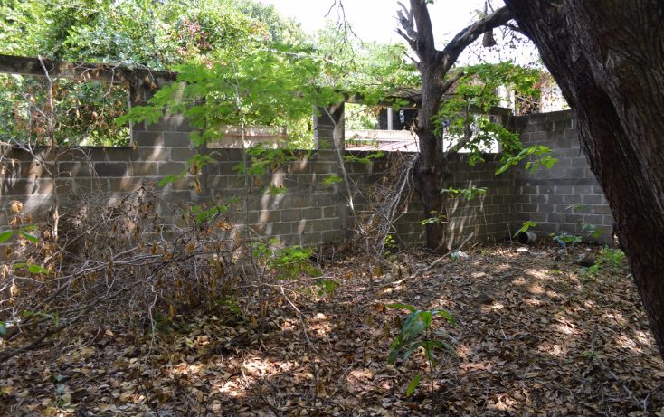 Foto de terreno comercial en venta en  , la zanja o la poza, acapulco de juárez, guerrero, 1239041 No. 04