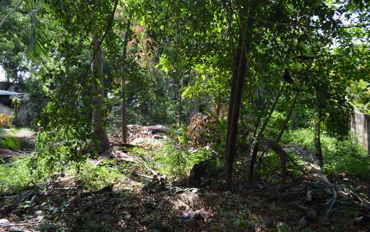 Foto de terreno comercial en venta en  , la zanja o la poza, acapulco de juárez, guerrero, 1239041 No. 06