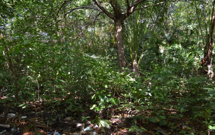 Foto de terreno comercial en venta en  , la zanja o la poza, acapulco de juárez, guerrero, 1239041 No. 08