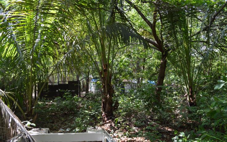 Foto de terreno comercial en venta en  , la zanja o la poza, acapulco de juárez, guerrero, 1239041 No. 09