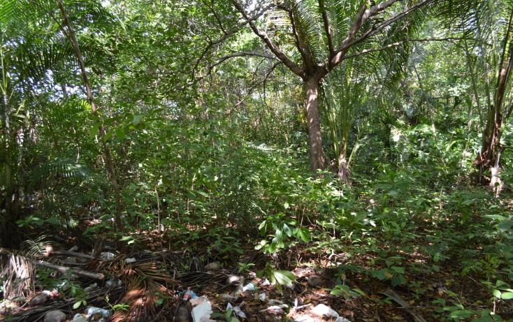 Foto de terreno comercial en venta en  , la zanja o la poza, acapulco de juárez, guerrero, 1239041 No. 10