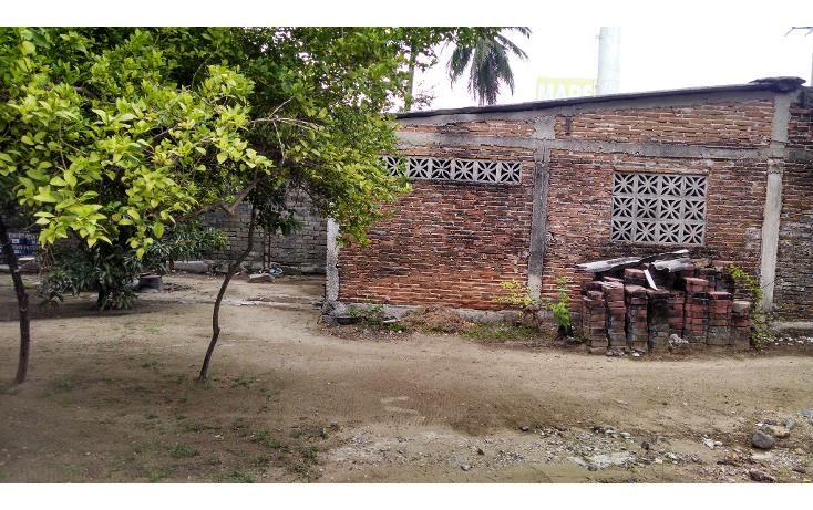 Foto de terreno habitacional en renta en  , la zanja o la poza, acapulco de ju?rez, guerrero, 1262431 No. 03