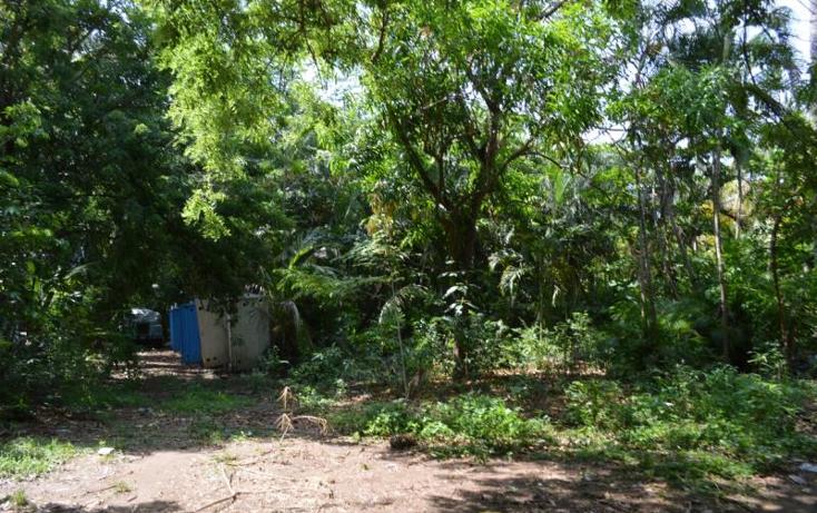 Foto de terreno habitacional en venta en  , la zanja o la poza, acapulco de ju?rez, guerrero, 1361699 No. 03