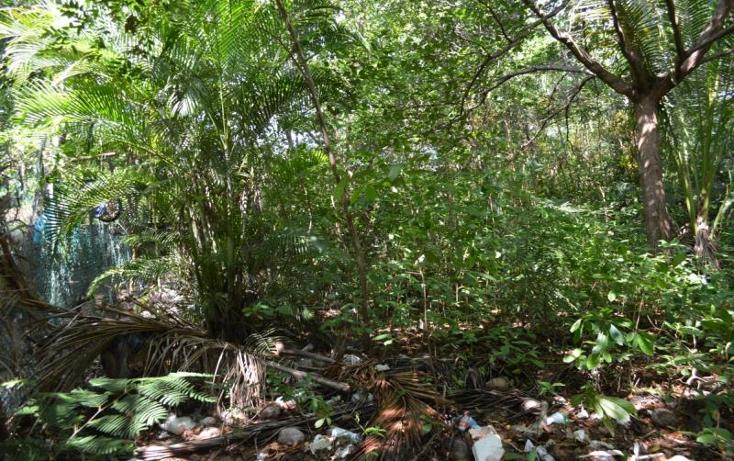 Foto de terreno habitacional en venta en  , la zanja o la poza, acapulco de ju?rez, guerrero, 1361699 No. 07