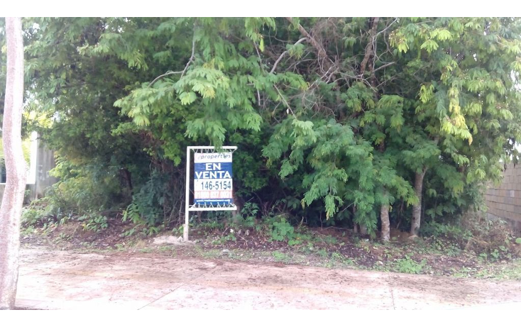 Foto de terreno habitacional en venta en  , lagos del sol, benito juárez, quintana roo, 1286483 No. 05