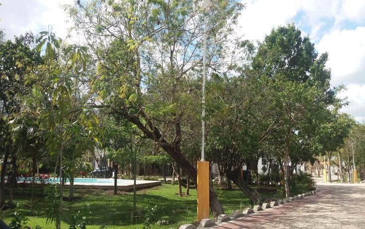Foto de terreno habitacional en venta en  , lagos del sol, benito ju?rez, quintana roo, 1757366 No. 06