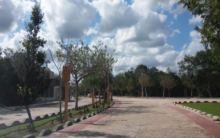 Foto de terreno habitacional en venta en  , lagos del sol, benito ju?rez, quintana roo, 1757366 No. 10