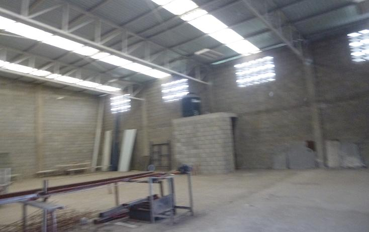 Foto de bodega en renta en  , laguna de la puerta, tampico, tamaulipas, 1098643 No. 06