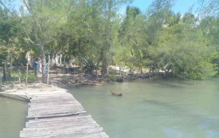 Foto de terreno habitacional en venta en laguna de tampamachoco, la mata, tuxpan, veracruz, 1431623 no 06