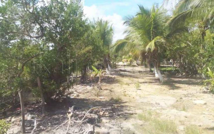 Foto de terreno habitacional en venta en laguna de tampamachoco, la mata, tuxpan, veracruz, 1431623 no 08