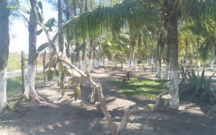 Foto de terreno habitacional en venta en laguna de tampamachoco, la mata, tuxpan, veracruz, 1431623 no 10
