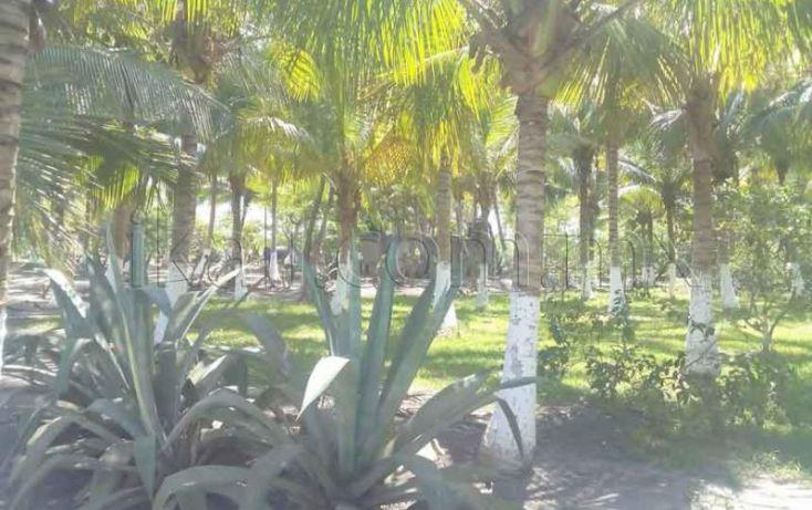 Foto de terreno habitacional en venta en laguna de tampamachoco, la mata, tuxpan, veracruz, 1431623 no 16