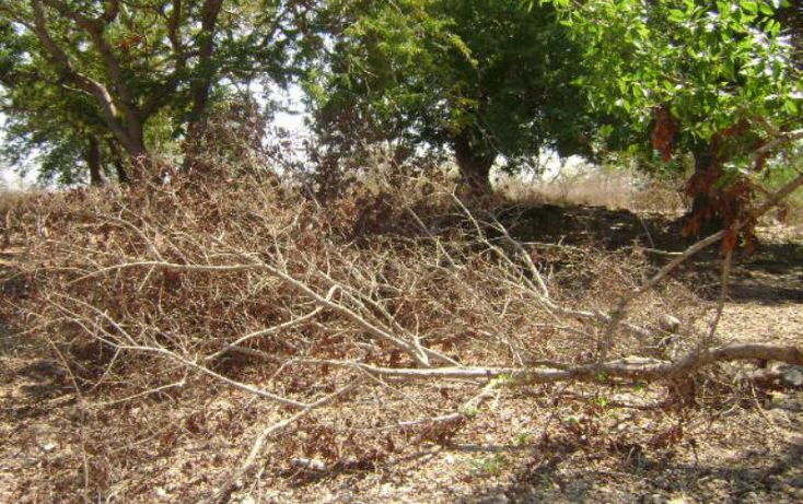 Foto de terreno habitacional en venta en laguna del quemado 1, laguna del quemado, acapulco de juárez, guerrero, 1804412 no 03