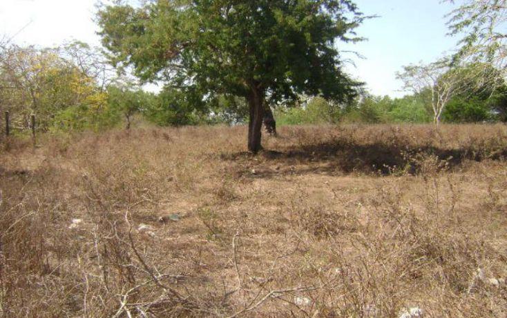 Foto de terreno habitacional en venta en laguna del quemado 1, laguna del quemado, acapulco de juárez, guerrero, 1804412 no 08