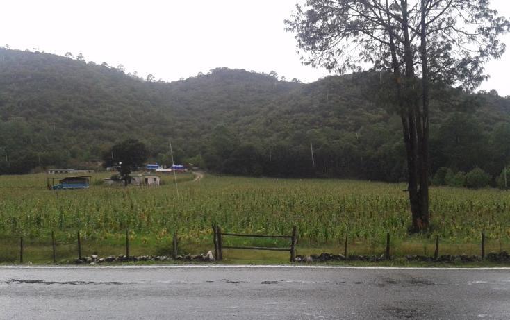 Foto de terreno habitacional en venta en  , laguna larga, comitán de domínguez, chiapas, 1704876 No. 01