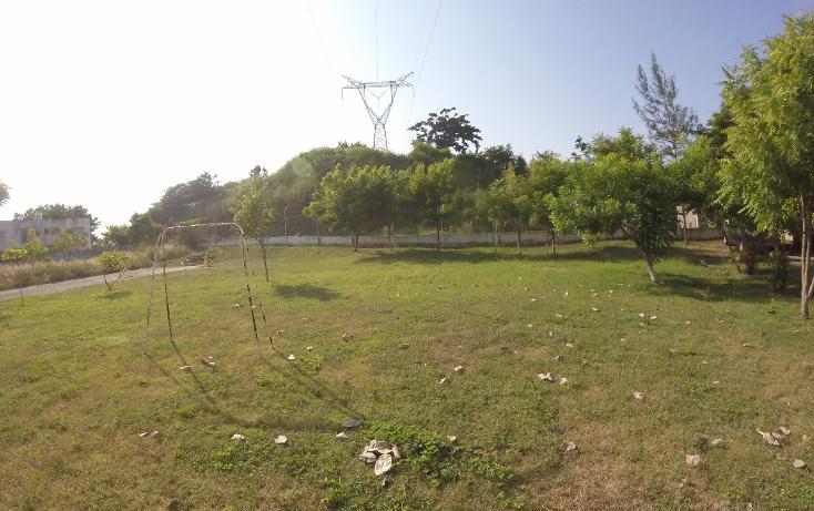Foto de casa en venta en  , laguna real, veracruz, veracruz de ignacio de la llave, 1276801 No. 08