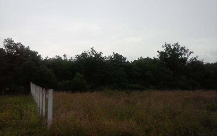 Foto de terreno habitacional en venta en  , las adjuntas, cadereyta jiménez, nuevo león, 1303377 No. 02