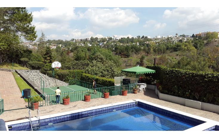 Foto de departamento en renta en  , las aguilas 2o parque, álvaro obregón, distrito federal, 2038776 No. 14