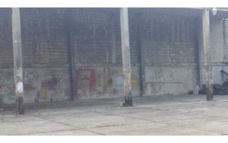 Foto de nave industrial en venta en  , las am?ricas, coatzacoalcos, veracruz de ignacio de la llave, 1161531 No. 08