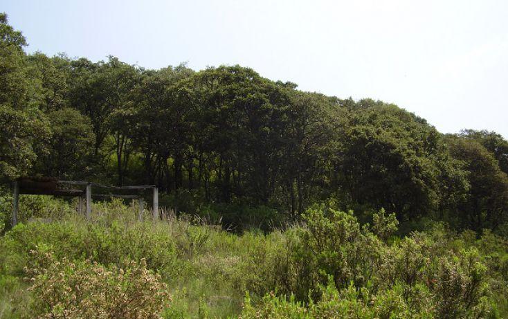 Foto de terreno comercial en venta en, las ánimas, naucalpan de juárez, estado de méxico, 1081243 no 04
