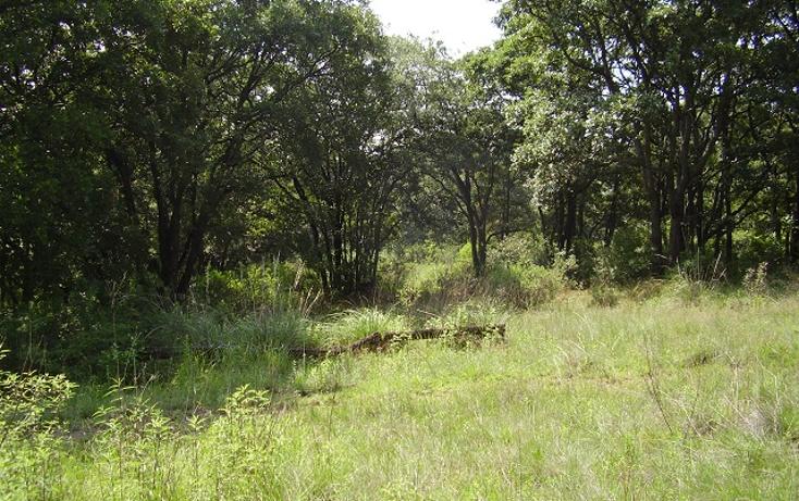 Foto de terreno comercial en venta en  , las ánimas, naucalpan de juárez, méxico, 1190795 No. 01