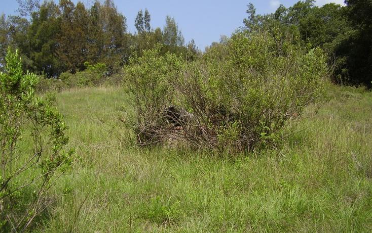 Foto de terreno comercial en venta en  , las ánimas, naucalpan de juárez, méxico, 1190795 No. 02