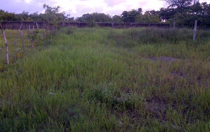 Foto de terreno habitacional en venta en  , las bajadas, veracruz, veracruz de ignacio de la llave, 1292239 No. 02