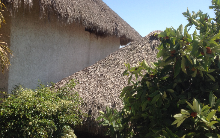 Foto de casa en venta en  , las brisas, acapulco de juárez, guerrero, 1184125 No. 14