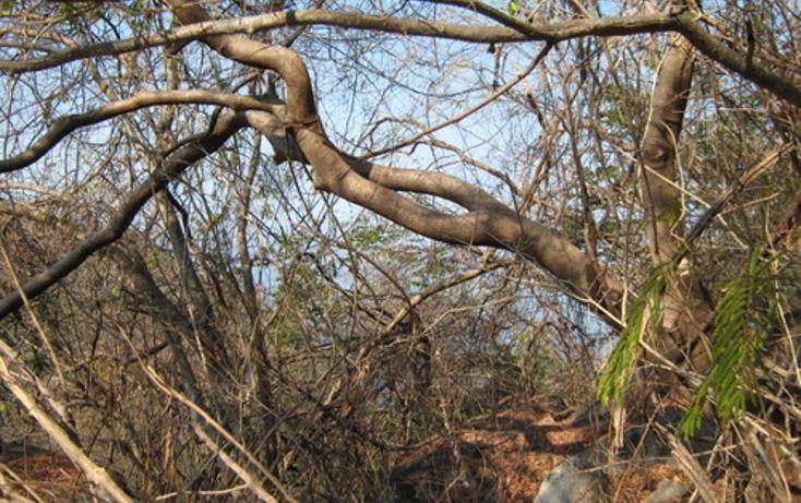 Foto de terreno habitacional en venta en  , las brisas, acapulco de juárez, guerrero, 1186805 No. 01