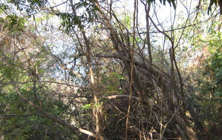 Foto de terreno habitacional en venta en  , las brisas, acapulco de juárez, guerrero, 1186805 No. 03