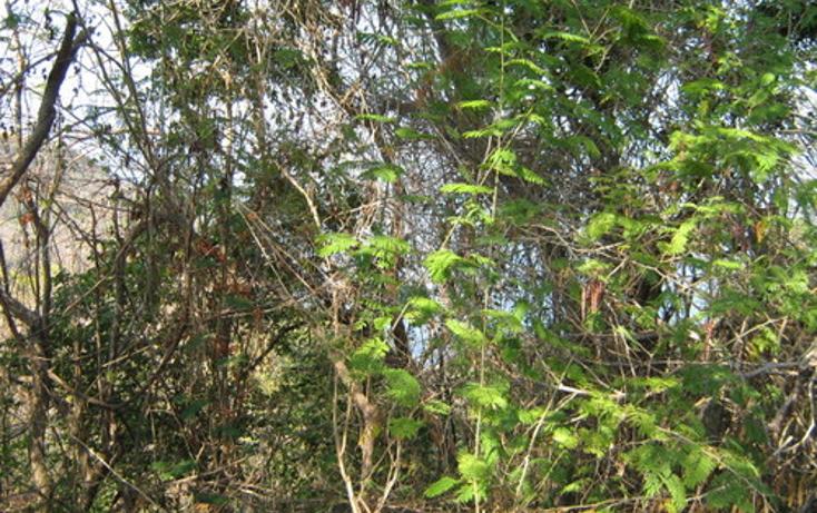 Foto de terreno habitacional en venta en  , las brisas, acapulco de juárez, guerrero, 1186805 No. 05