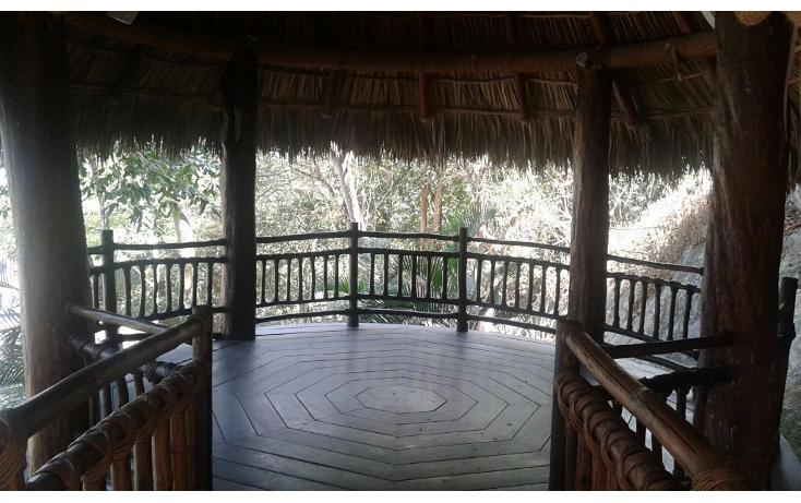 Foto de casa en renta en  , las brisas, acapulco de juárez, guerrero, 1767828 No. 05