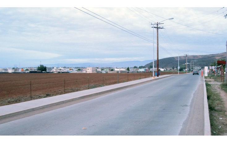 Foto de terreno habitacional en venta en  , las brisas, ensenada, baja california, 1202605 No. 04