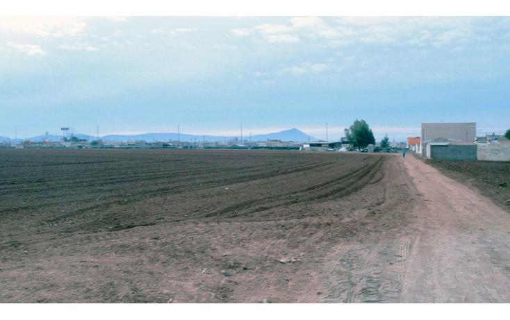 Foto de terreno habitacional en venta en  , las brisas, ensenada, baja california, 1202605 No. 05