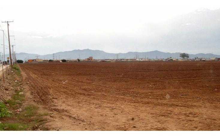 Foto de terreno habitacional en venta en  , las brisas, ensenada, baja california, 1202605 No. 06