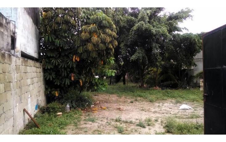Foto de local en renta en  , las brisas, m?rida, yucat?n, 1343117 No. 09