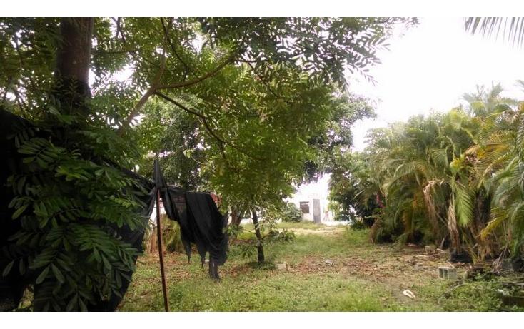 Foto de local en renta en  , las brisas, m?rida, yucat?n, 1343117 No. 12