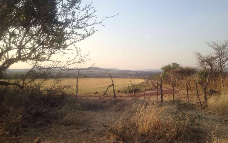 Foto de terreno habitacional en venta en  , las camelinas, la piedad, michoacán de ocampo, 1871074 No. 03
