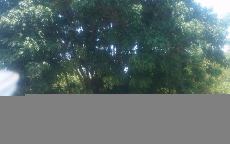 Foto de terreno habitacional en venta en, las cañadas, zapopan, jalisco, 1186833 no 01